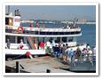 Ferry & Shuttle service